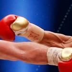 Boxe – Championnat du Monde WBA et WBO des poids lourds
