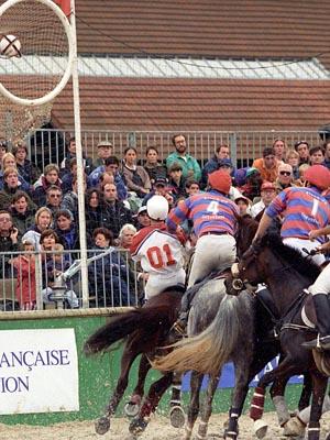 horse ball sport equestre