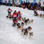 Notre Top 5 des Sports d'hiver!