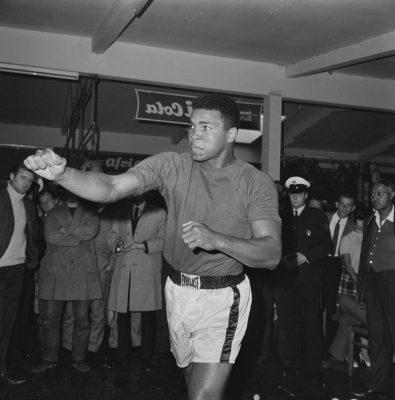 BOXE - ENTRAINEMENT ALI - 1966 ali (mohamed) clay (cassius) fonds n/b  avant le combat contre Karl Mildenberger a Francfort le 10 septembre 1966