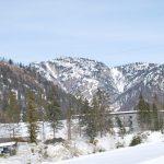 Biathlon : Martin Fourcade en impose !