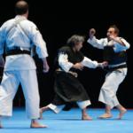 Arts martiaux : 4 disciplines venues des 4 coins du Monde ! ( + Vidéo)