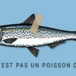 Notre TOP 5 de poissons d'avril en sport !
