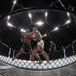 MMA : le sport de combat hors normes