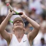 Wimbledon 2019 : Halep victorieuse, Mahut/Roger-Vasselin inconsolables et une FeVic imprévisible !...