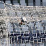 Football : Les infos mercato à ne pas louper ! (+ Vidéo)